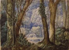 Selva Brasileira (Araújo Porto Alegre)
